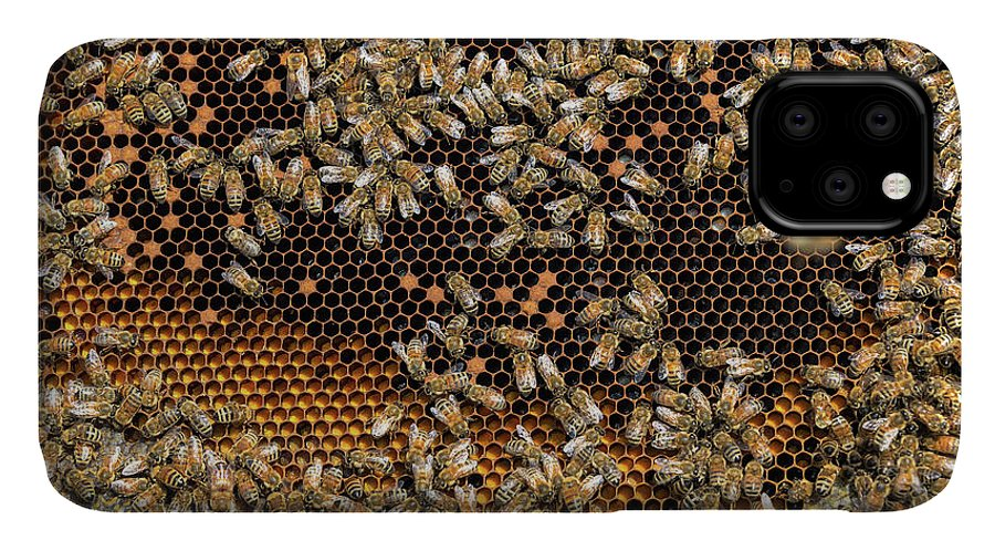 Bee IPhone Case featuring the photograph View of a Beehive by Jess Kraft