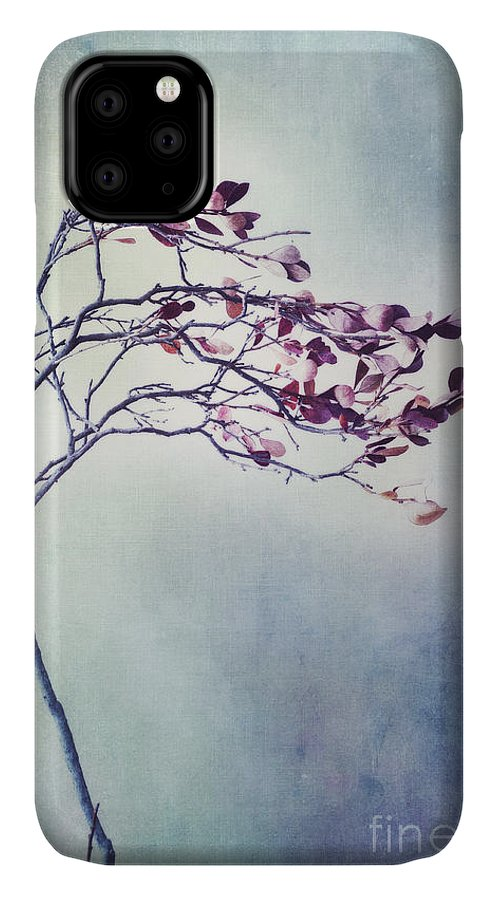 Blueberry Branch IPhone Case featuring the photograph Windswept by Priska Wettstein