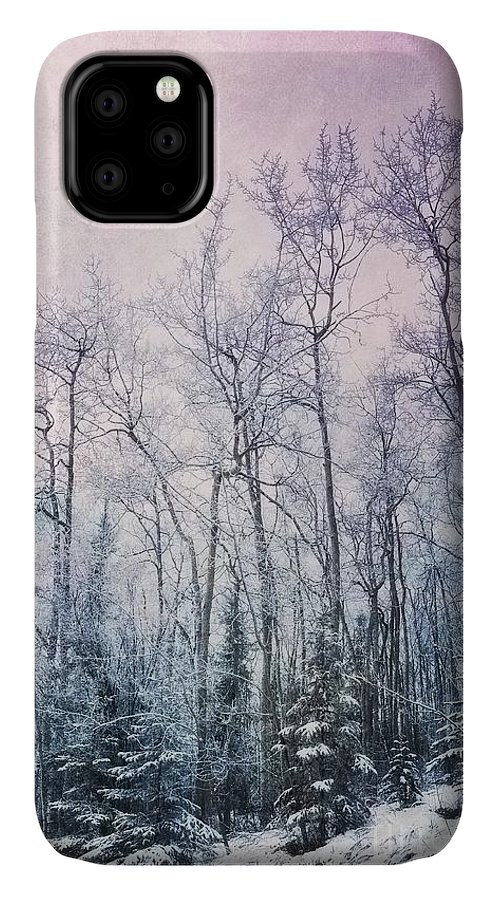 Forest IPhone Case featuring the photograph Winter Forest by Priska Wettstein