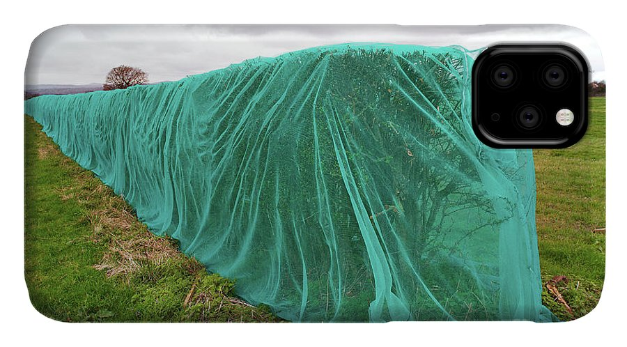 Netting IPhone 11 Case featuring the photograph Netted Hedges by David Woodfall Images/science Photo Library