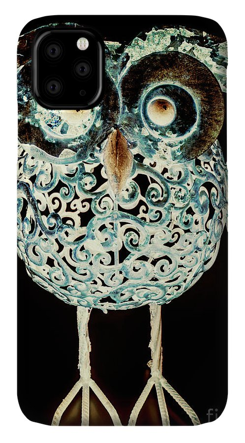 Animal IPhone 11 Case featuring the photograph Ornamental Ornithology by Jorgo Photography - Wall Art Gallery