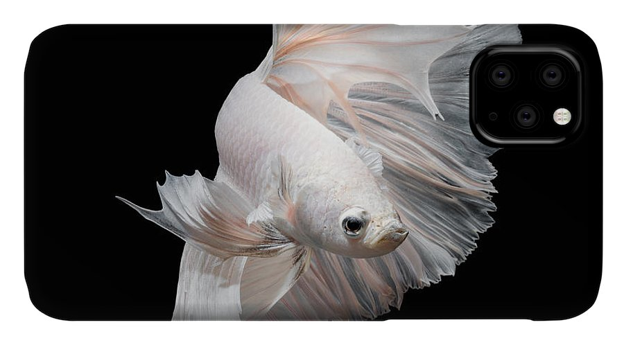 Fancy IPhone Case featuring the photograph Betta Fishsiamese Fighting Fish by Nuamfolio