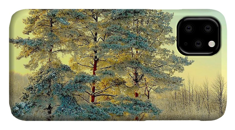 Forest IPhone Case featuring the photograph Beautiful Landscape With Winter Forest by Deserg