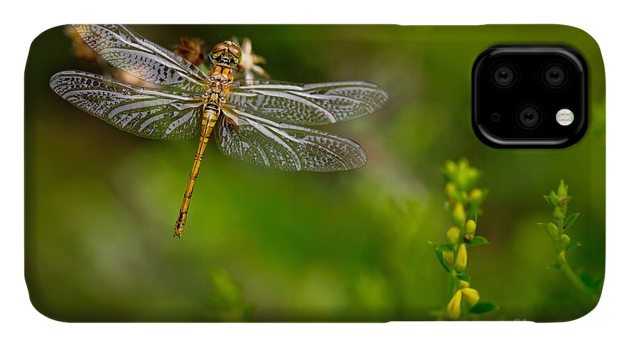Beauty IPhone Case featuring the photograph Beautiful Nature Scene With Common by Ondrej Prosicky