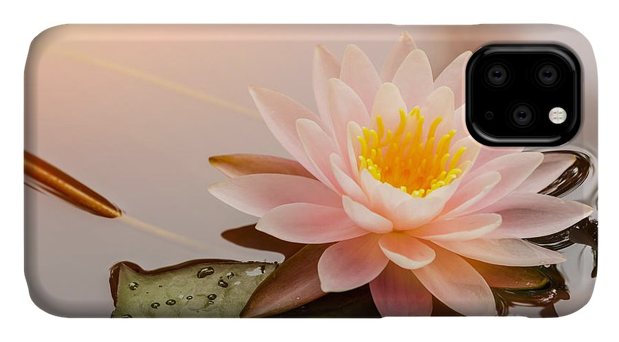 Romance IPhone Case featuring the photograph Beautiful Waterlily Or Lotus Flower by Zhao Jiankang