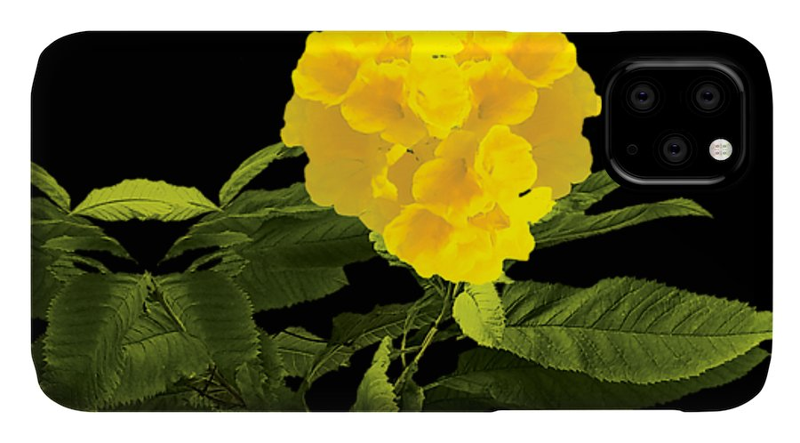 Wall Art IPhone Case featuring the digital art Beautiful Yellow Flower by Anita Morya
