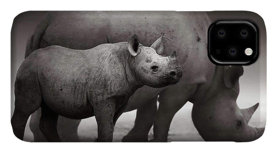 Wild IPhone Case featuring the photograph Black Rhinoceros Baby And Cow by Johan Swanepoel
