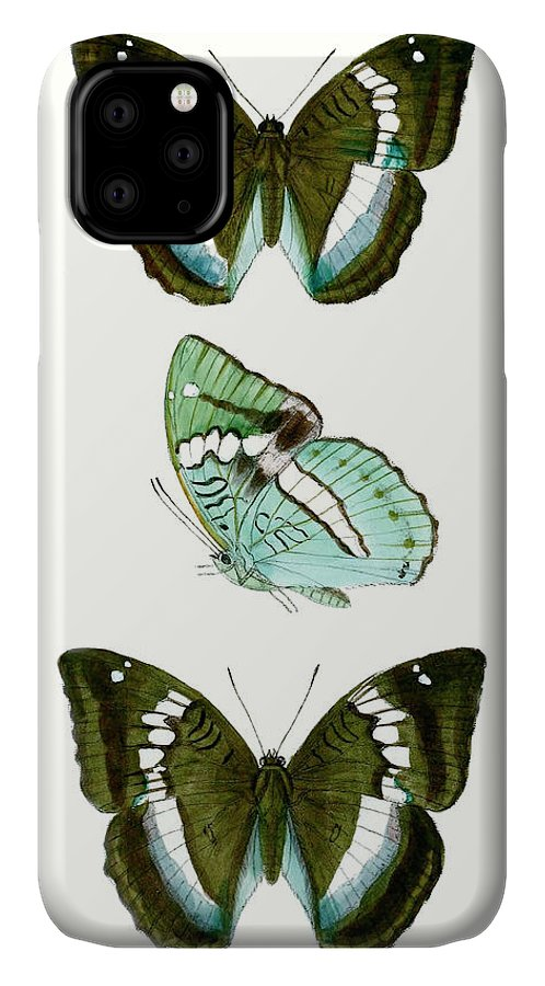 Animals & Nature+butterflies & Bees IPhone Case featuring the painting Butterfly Specimen II by Vision Studio
