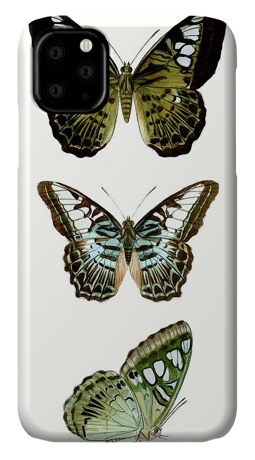 Animals & Nature+butterflies & Bees IPhone Case featuring the painting Butterfly Specimen Vi by Vision Studio