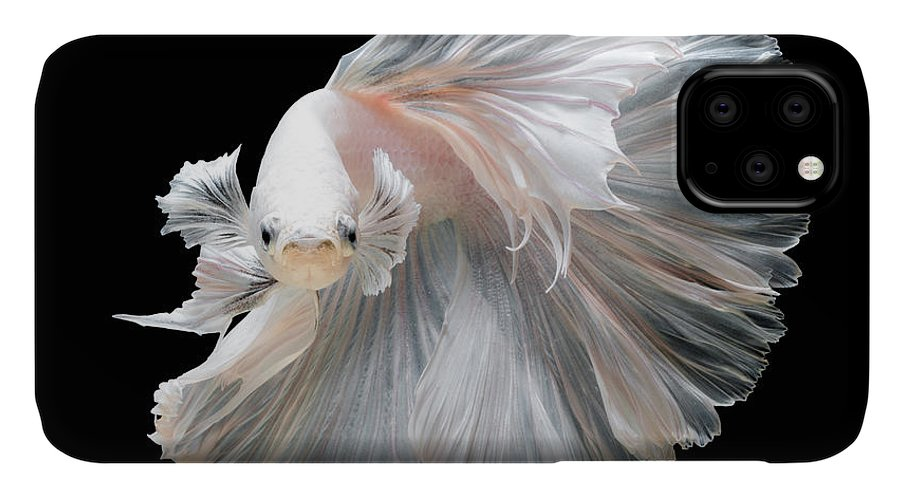 Fancy IPhone Case featuring the photograph Close Up Of White Platinum Betta Fish by Nuamfolio