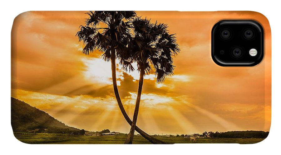 Love IPhone Case featuring the photograph Couple by Lam Loi
