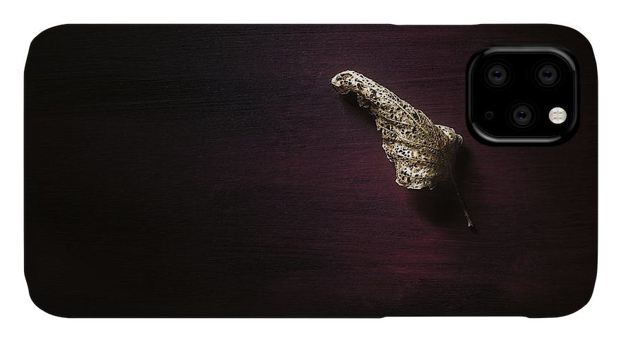 Leaf IPhone Case featuring the photograph Dry Leaf On Muted Red by Scott Norris