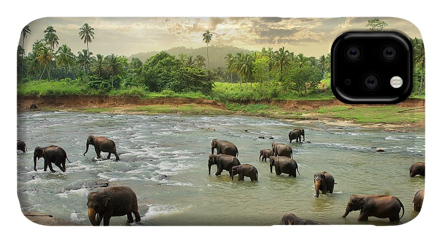 Big IPhone Case featuring the photograph Elephants In Water by Givaga