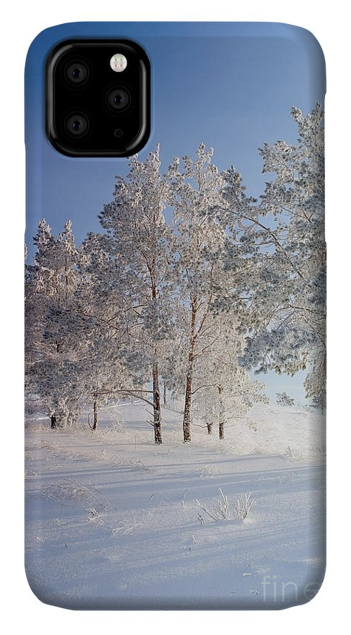 Forest IPhone Case featuring the photograph Evening Winter Landscape With Pines On by Deserg