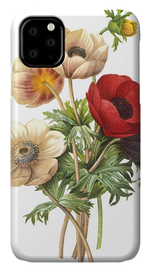 Blank IPhone 11 Case featuring the photograph Flower Illustration by The Palms