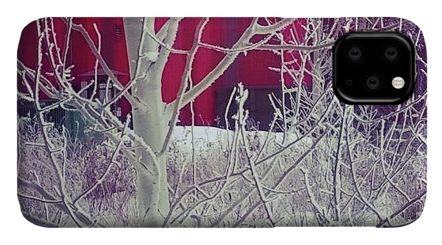 Winter IPhone Case featuring the photograph Frost by Johanna Wray