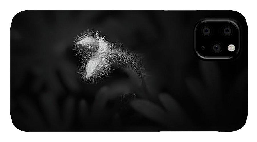Landscape IPhone Case featuring the photograph Geranium Sanguineum Buds by Scott Norris