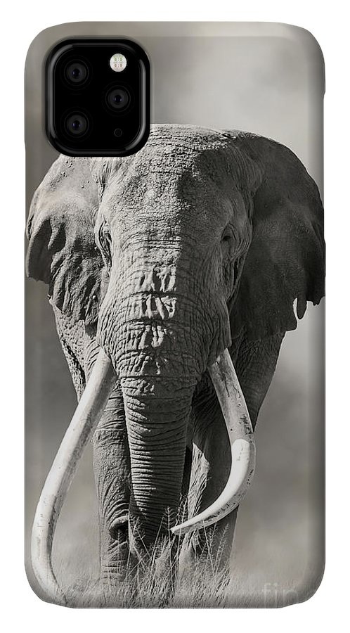 Male IPhone 11 Case featuring the photograph Giant Tusked Bull Elephant In Amboseli, Kenya by Jane Rix