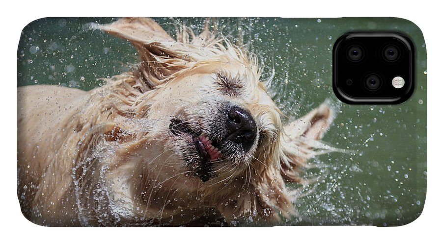 Drop IPhone Case featuring the photograph Golden Retriever Shaking Off Water by Lorenzooooo