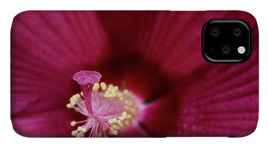 Macro Photography IPhone Case featuring the photograph Hibiscus by Marie Leslie
