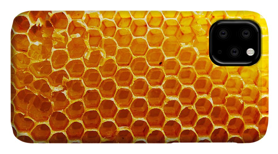 Bee IPhone Case featuring the photograph Honey Beehive by Val Lawless