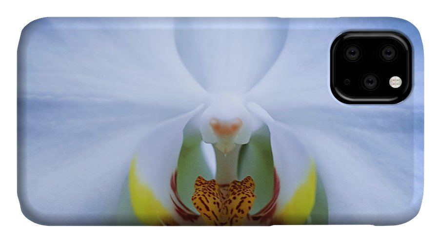Outdoors IPhone Case featuring the photograph Phalaenopsis Orchid by By Ken Ilio