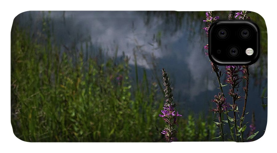 Purple Loosestrife IPhone Case featuring the photograph Purple Daydream by Jerry LoFaro