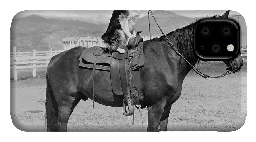 Country IPhone 11 Case featuring the photograph Saddle Up by Everett Collection