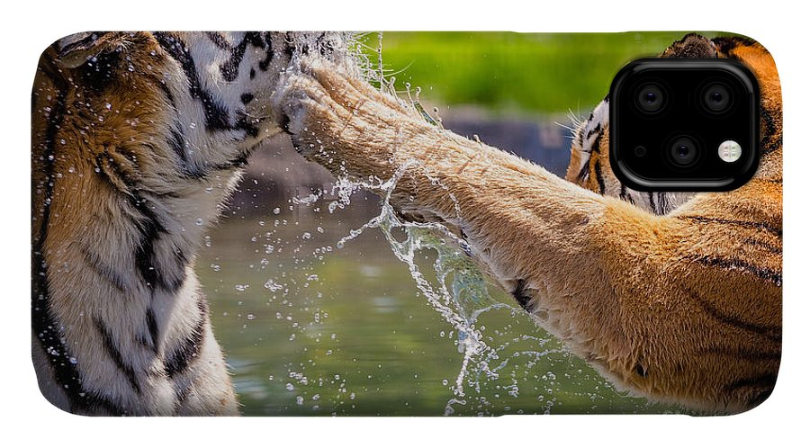 Play IPhone Case featuring the photograph Two Adult Tigers At Play In The Water by Jfunk