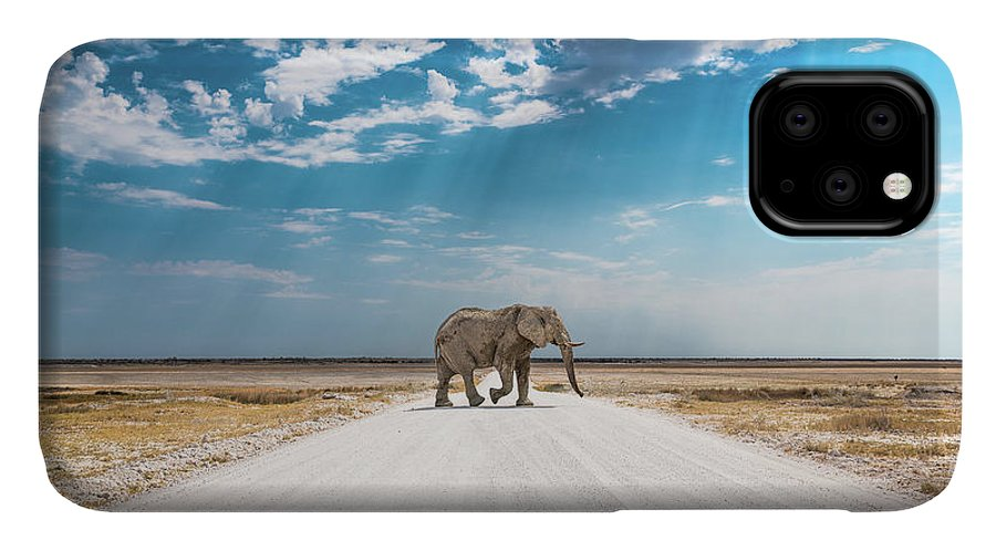 Elephant IPhone Case featuring the photograph Under An African Sky by Hamish Mitchell