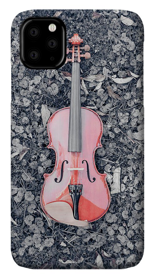 Music IPhone Case featuring the photograph Violin In The Grass by Edward Fielding