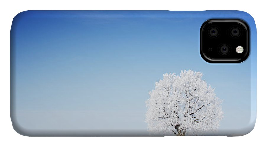 Forest IPhone Case featuring the photograph Winter Tree In A Field With Blue Sky by Dudarev Mikhail