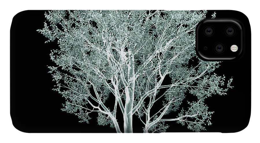 Image IPhone Case featuring the digital art Xray Image Of A Tree Isolated On Black by Posteriori