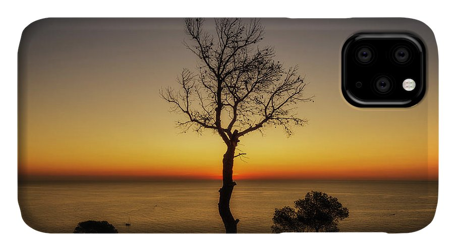 Renega IPhone Case featuring the photograph Silhouette Of A Lonely Tree By The Sea by Vicen Photography