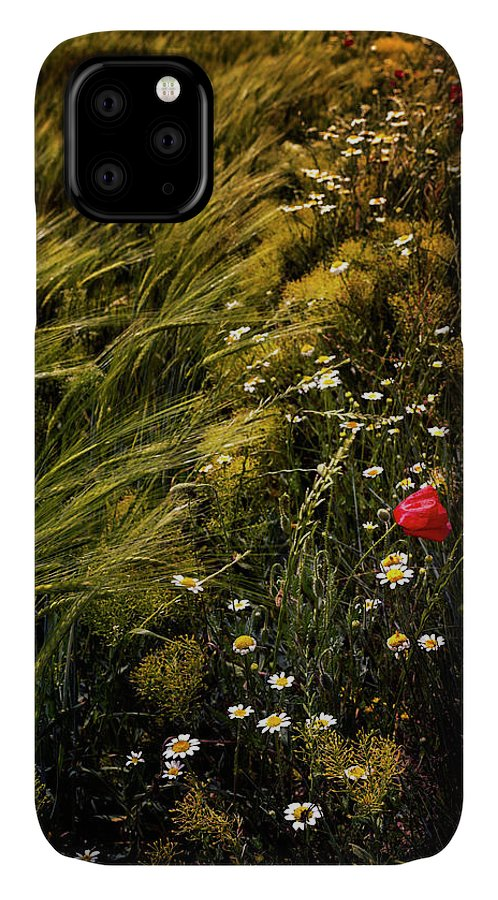 Photography IPhone Case featuring the photograph Wild Flowers In The Field by Vicente Sargues