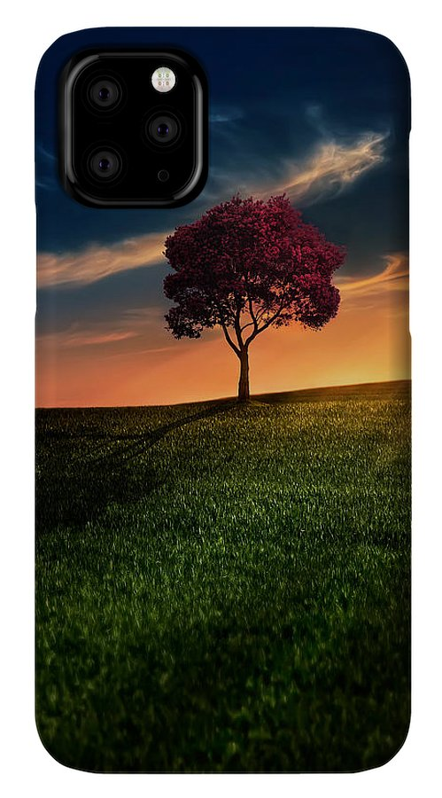 Agriculture IPhone 11 Pro Case featuring the photograph Awesome Solitude by Bess Hamiti