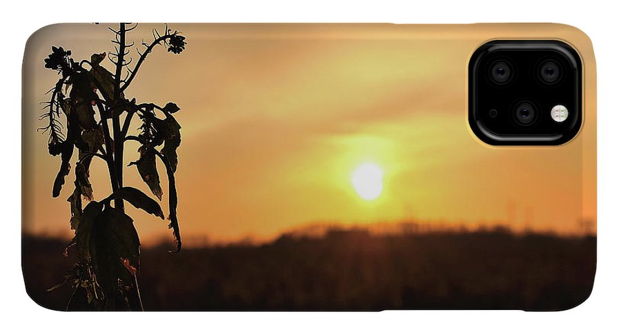 Sonnenuntergang Blume Flowwer Sky Himmel IPhone 11 Pro Max Case featuring the photograph Sonnenuntergang by Scimitarable