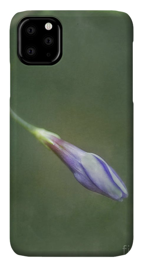Periwinkle IPhone 11 Pro Max Case featuring the photograph Vinca by Priska Wettstein