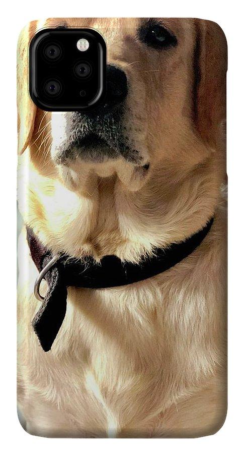 Labrador Dog IPhone 11 Pro Max Case featuring the photograph Labrador Dog by Arun Jain