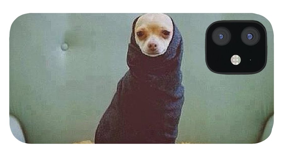 Dogue IPhone 12 Case featuring the photograph 😂😂😂😂 #dogue #vogue by Matheo Montes