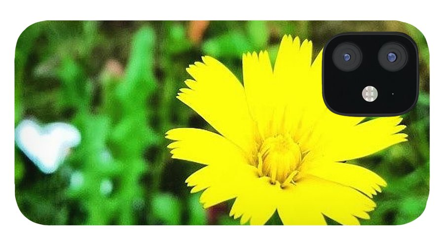 Beautiful IPhone 12 Case featuring the photograph Yellow Flower by J Roustie
