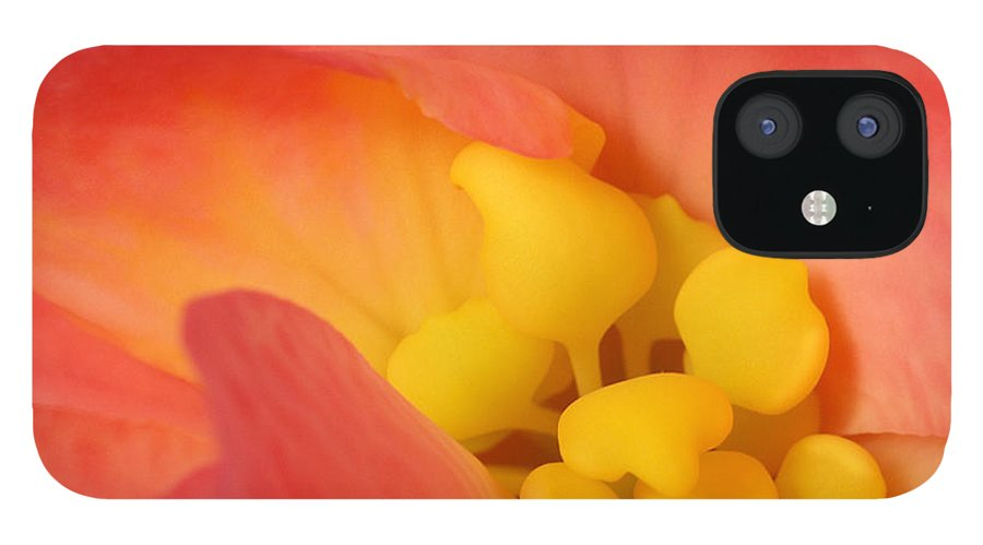 Begonia Close Up iPhone 12 Case featuring the photograph From The Heart by Bill Morgenstern
