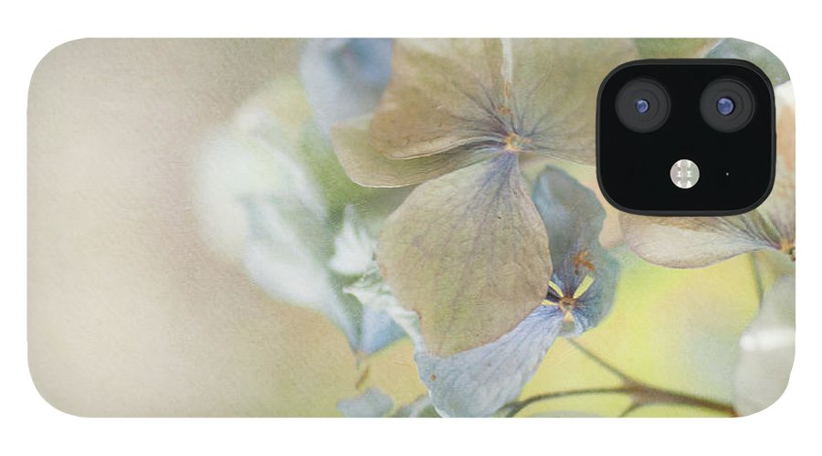Hydrangea iPhone 12 Case featuring the photograph Hydrangea by Jill Ferry