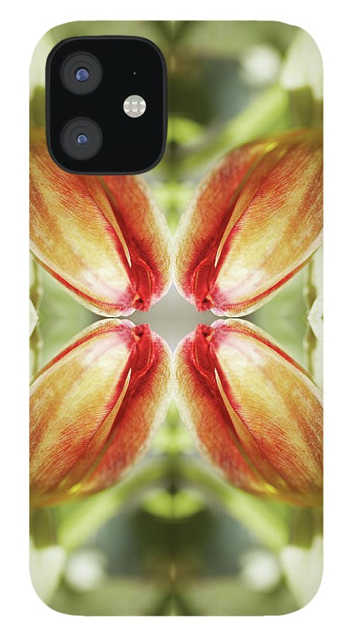 Tranquility IPhone 12 Case featuring the photograph Red Tulip by Silvia Otte