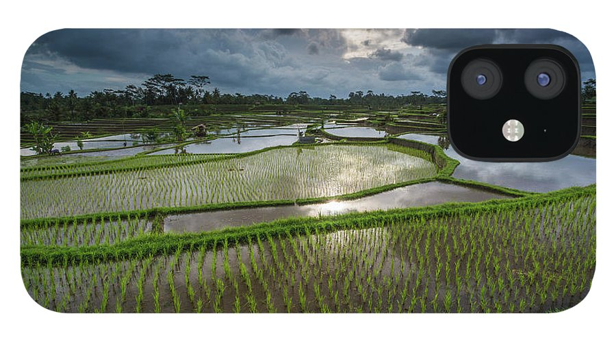 Tranquility iPhone 12 Case featuring the photograph Rice Terraces In Central Bali Indonesia by Gavriel Jecan