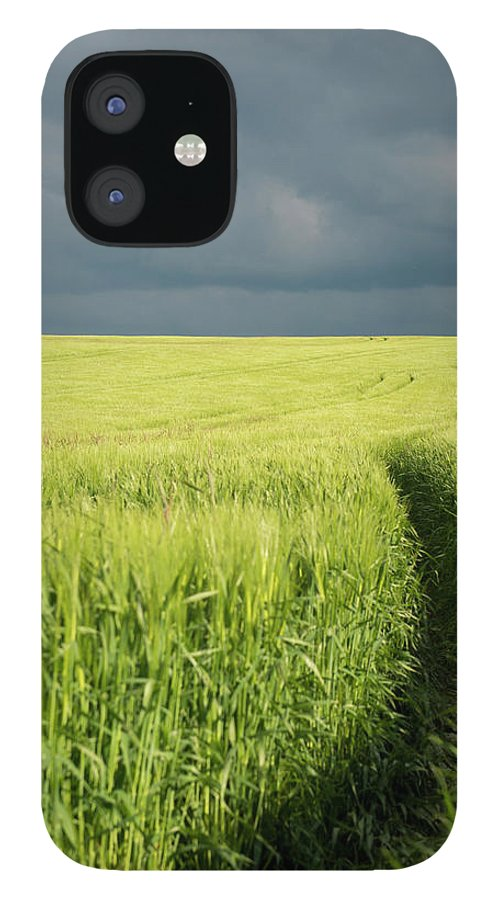 Tranquility IPhone 12 Case featuring the photograph Tire Tracks In Grain Field by Thomas Winz