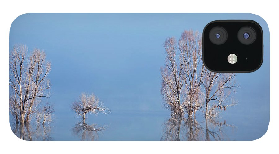 Water's Edge IPhone 12 Case featuring the photograph Misty Lake In Spring by Temizyurek
