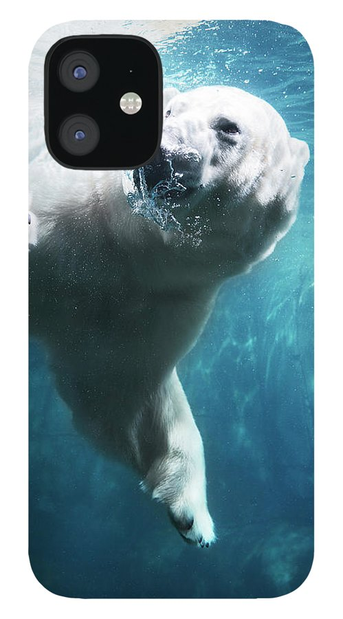 Diving Into Water IPhone 12 Case featuring the photograph Polarbear In Water by Henrik Sorensen