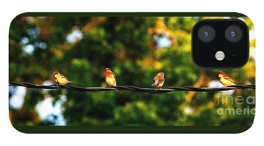 Color Photography IPhone 12 Case featuring the photograph 4 Birds by Leon Hollins III