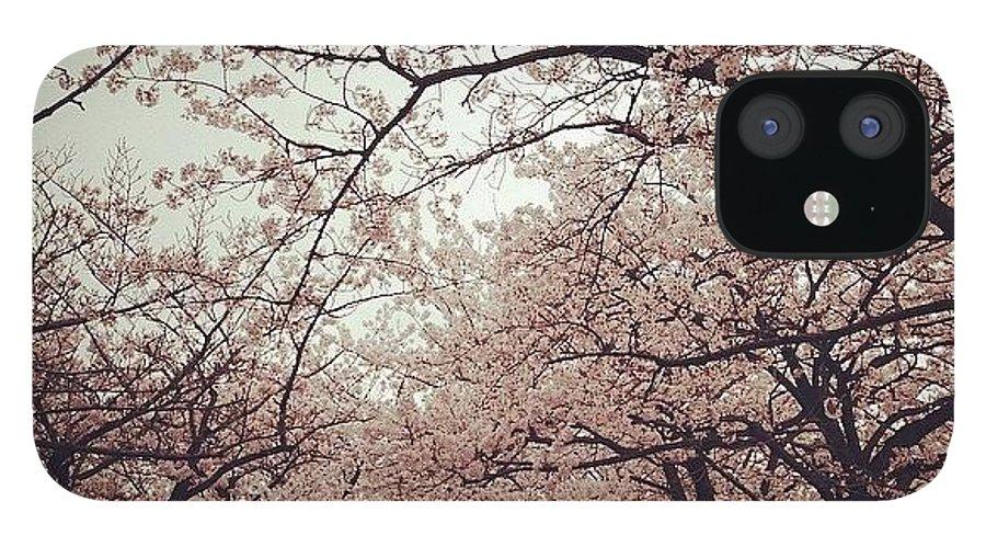 Landscape IPhone 12 Case featuring the photograph #landscape by Tokyo Sanpopo